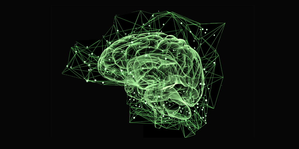 EB2020-Brain